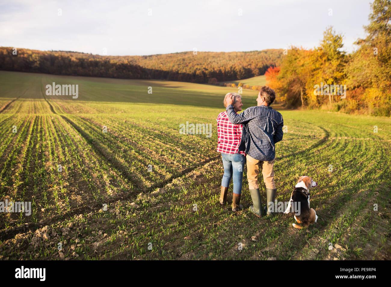 Älteres Ehepaar mit Hund auf einem Spaziergang in einem Herbst Natur. Stockbild