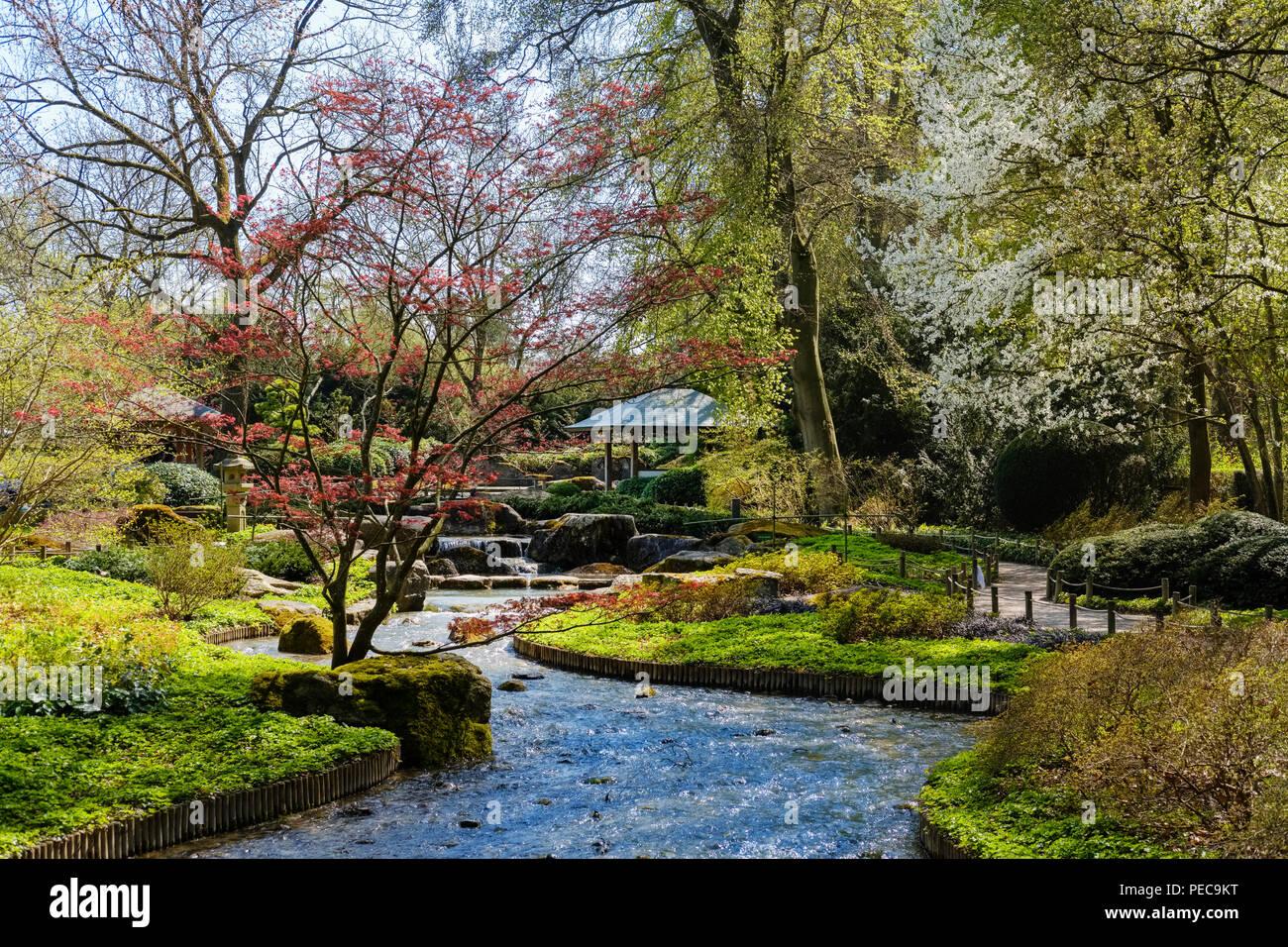 Japangarten Japanischer Garten Botanischer Garten Augsburg