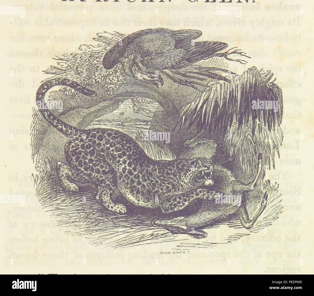 """Bild von Seite 9 des """"Afrikanischen Glen, Kolosseum, Regent's Park. Eine Beschreibung der Blick ... und ... Panoramablick Malerei ... zusammen mit einer umfangreichen Sammlung von ... Exemplare der natürlichen Geschichte... Zwölfte Ausgabe 'b_0058. Stockbild"""