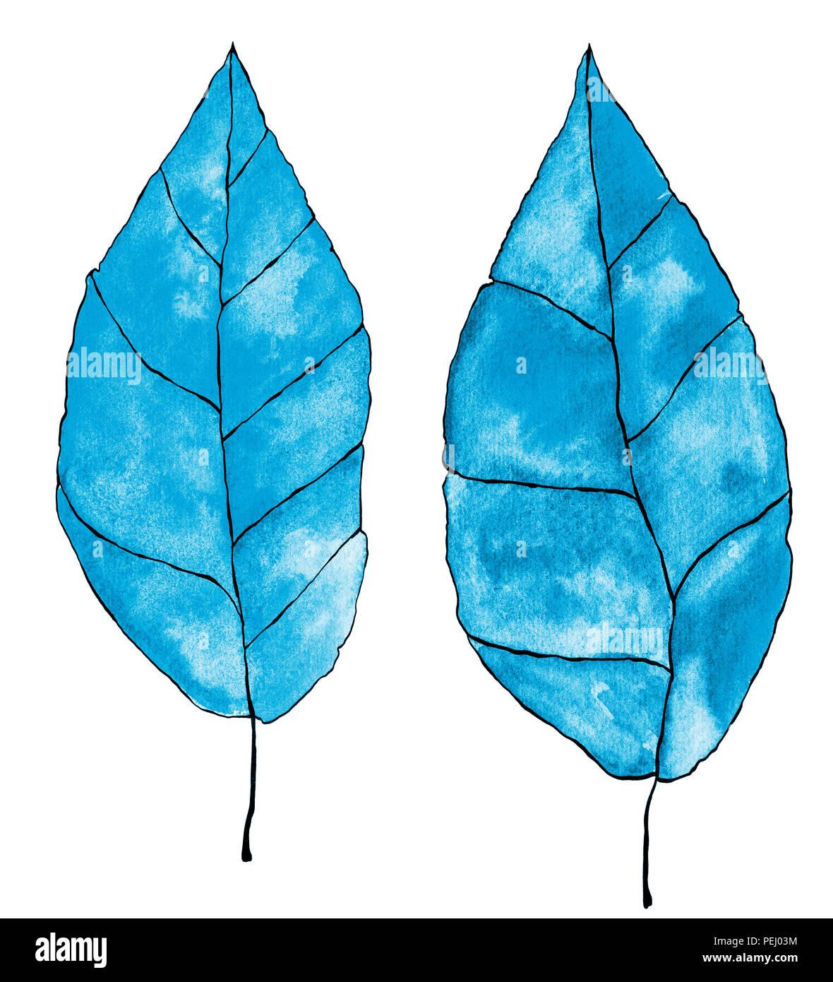 Ein Aquarell Abbildung 2 Zwei Blätter In Blau Blaugrün Türkis
