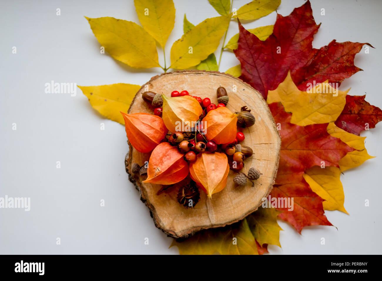 Herbst Noch Leben Winter Kirsche Und Herbst Dekoration Zubehor