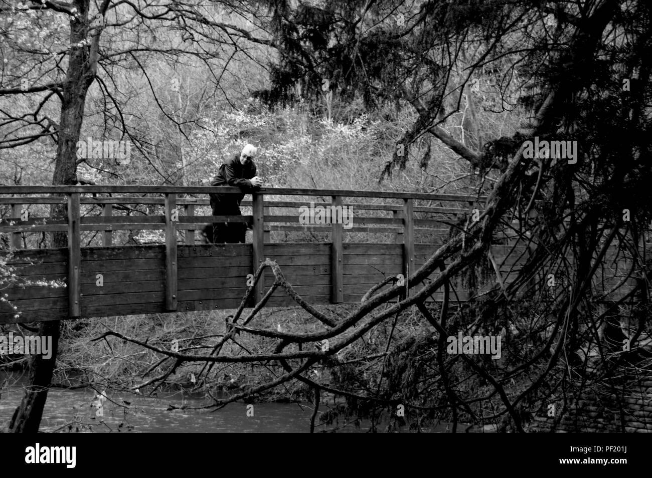 Mann auf schwarze und weiße Brücke im Wald Stockbild
