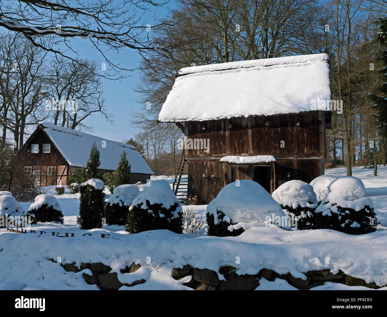 Naturpark Lüneburger Heide, Winter, alter Speicher, Oberhaverbeck, Gemeinde Bispingen, Landkreis Diepholz, Niedersachsen, Deutschland | Natur Stockbild