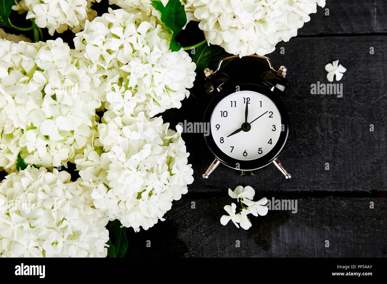 Schwarz Wecker Und Weiße Blumen Auf Schwarzem Hintergrund