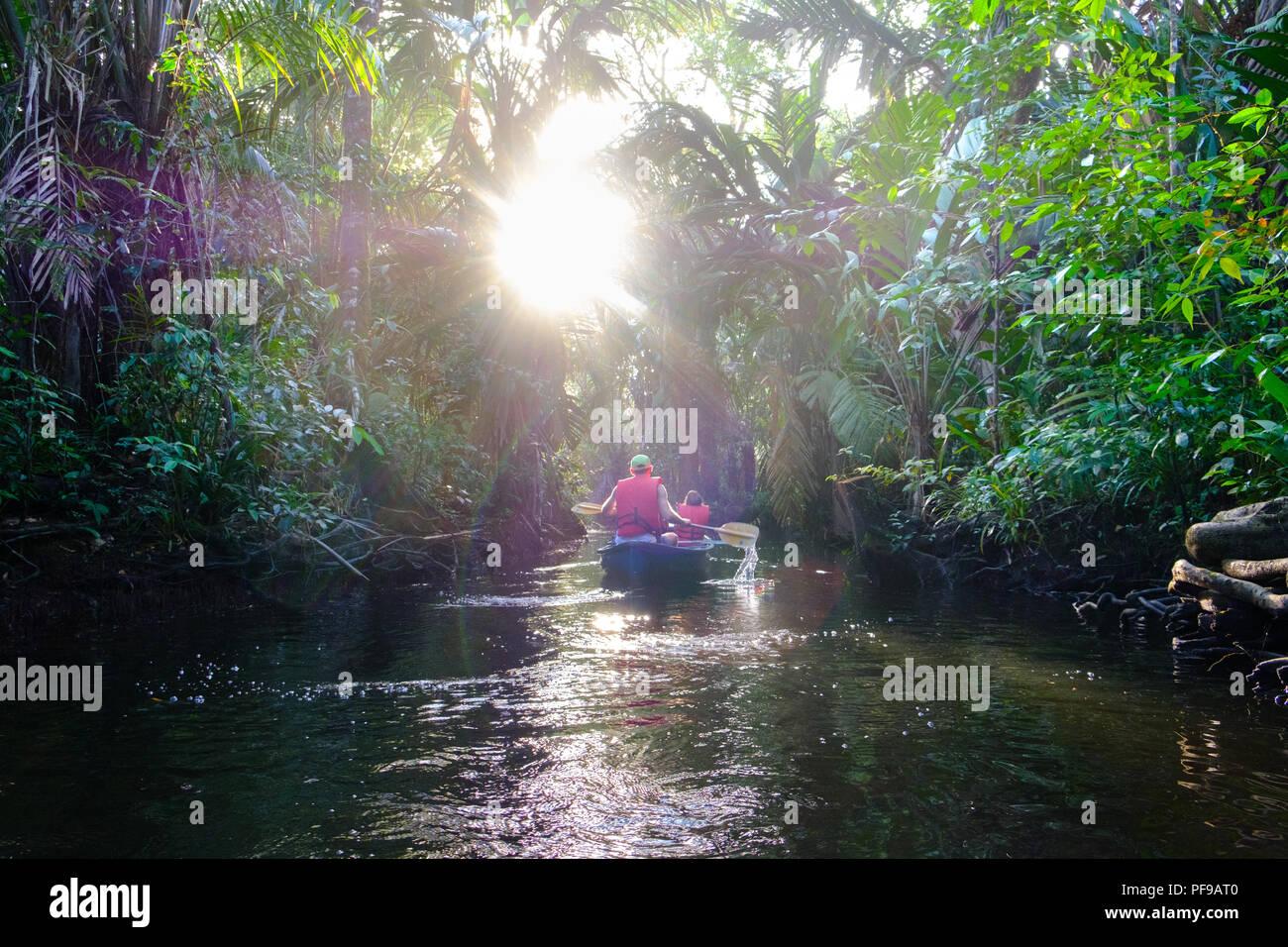 Kanu Ausflug in die wilde Tortugero region Stockbild