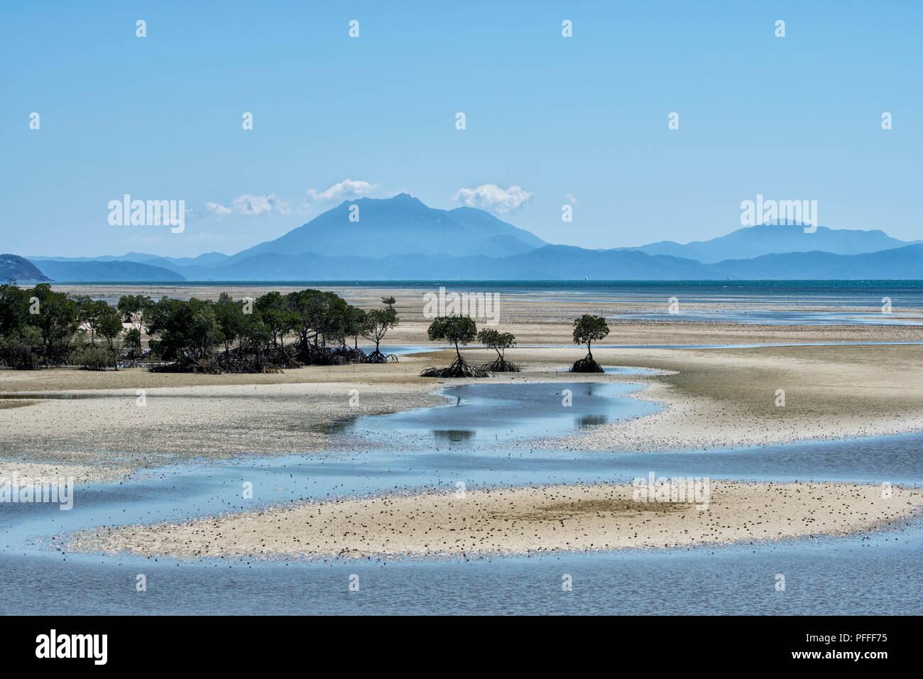 Malerischer Blick auf Yule Point in der Nähe von Port Douglas, Far North Queensland, FNQ, QLD, Australien Stockbild
