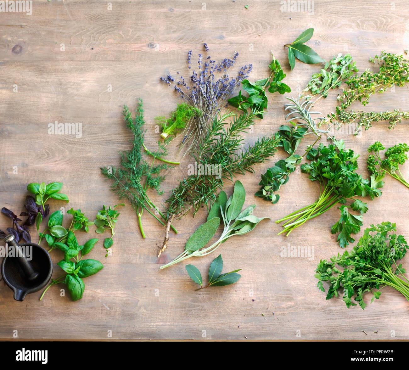 Auswahl der Kräuter in der Küche verwendet Mediterreanean ...