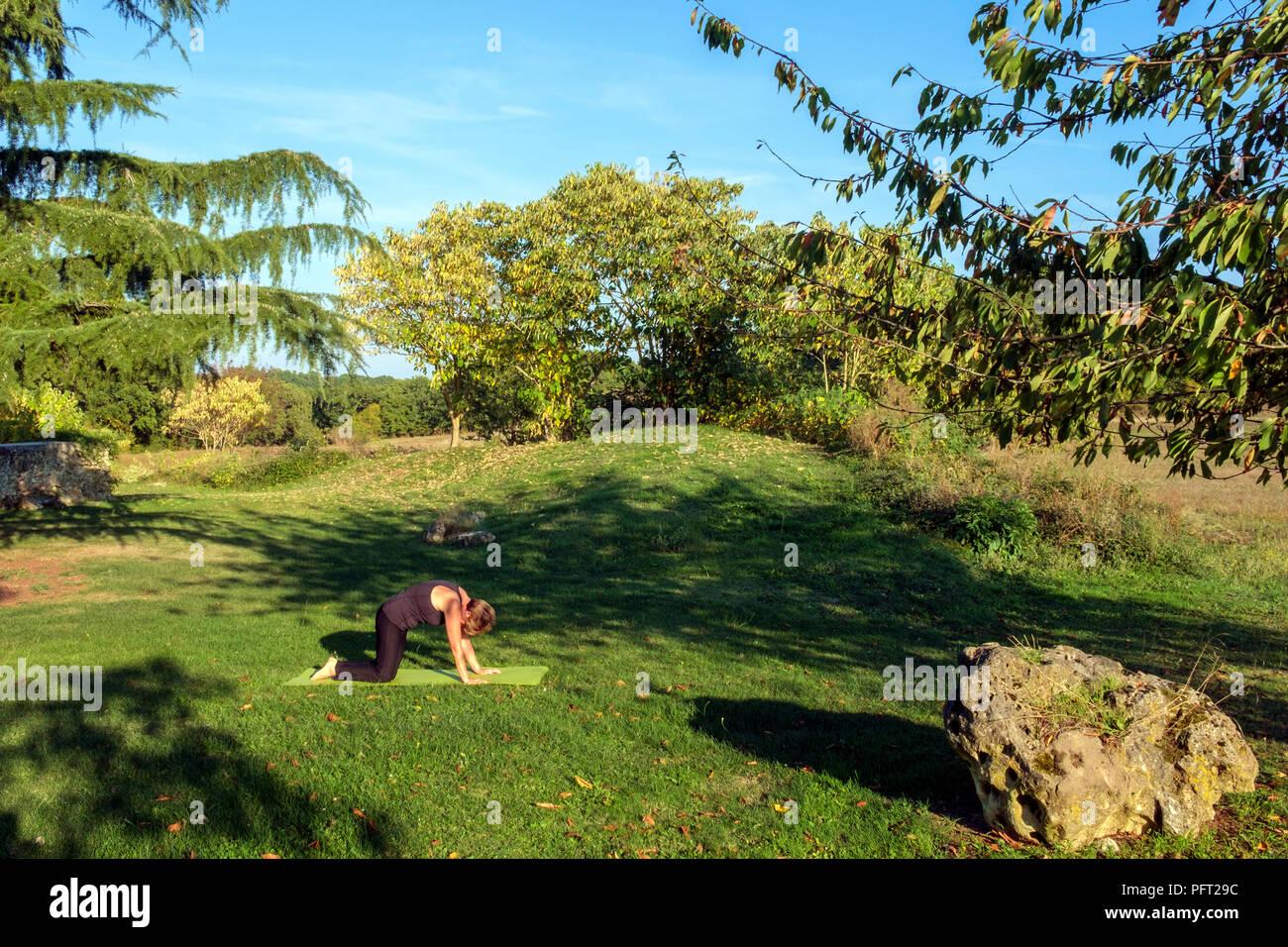 Von Idyllischen Landlichen Franzosischen Landschaft Eine Reife Frau Ubt Ihre Hatha Yoga Positionen Im Schonen Herbst Sonne Umgeben Die Katze Darstellen Stockfotografie Alamy