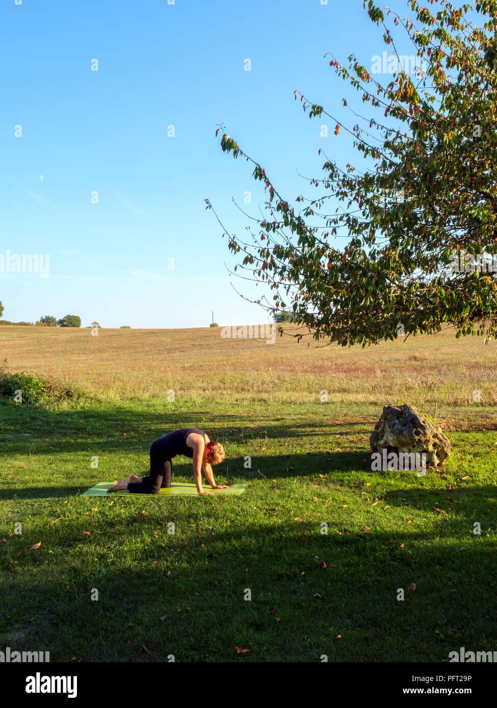 Von Idyllischen Landlichen Franzosischen Landschaft Eine Reife Frau Ubt Ihre Hatha Yoga Positionen Im Schonen Herbst Sonne Umgeben Die Katze Darstellen Stockfoto Bild 216272946 Alamy