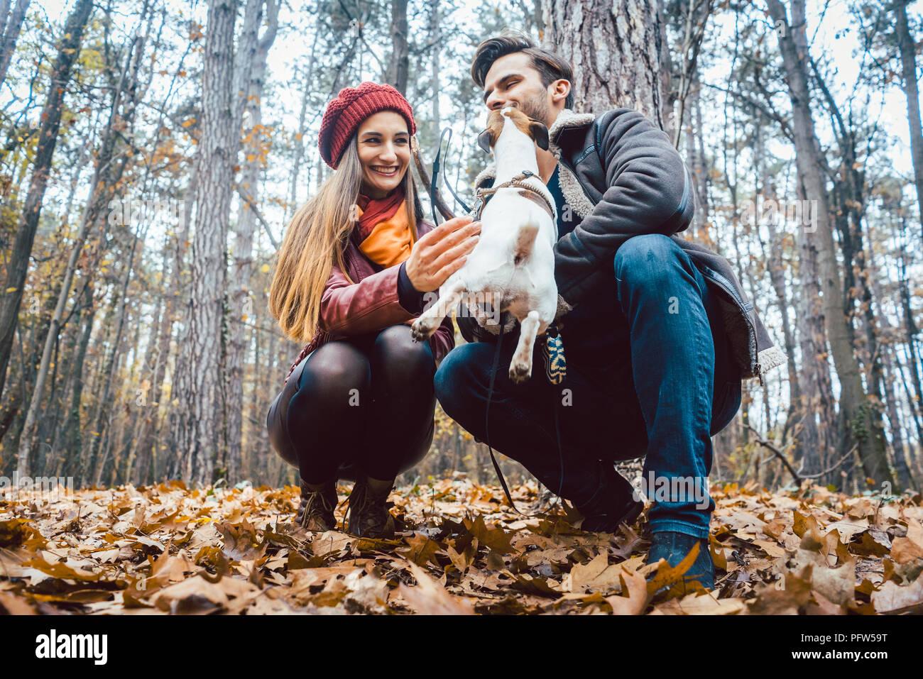 Paar von Frau und Mann spielt mit ihrem Hund im Herbst Stockbild