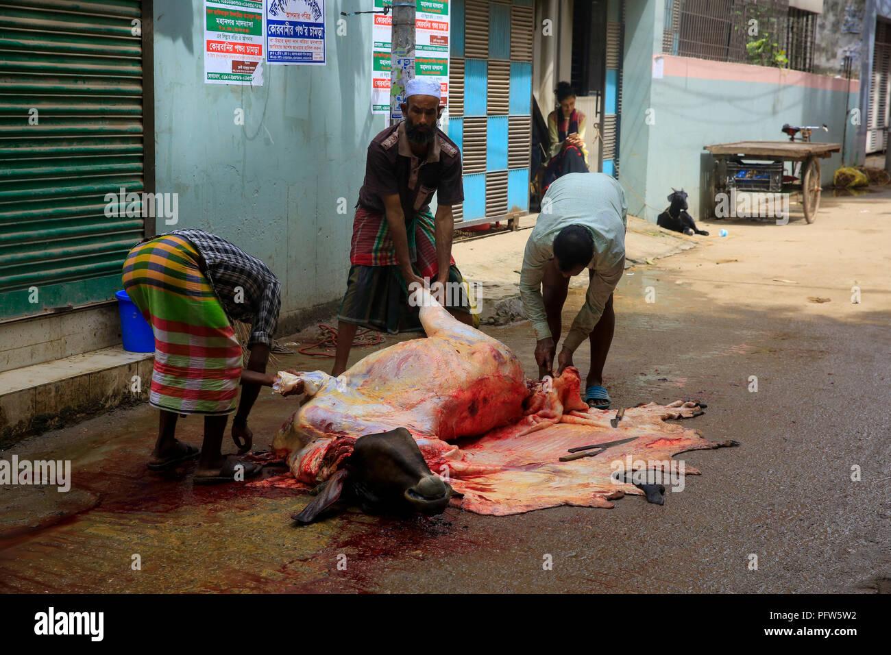 Bengalische Muslime schlachten ihre Tiere auf der Straße in Dhaka, der Hauptstadt von Bangladesch, am ersten Tag des Eid-Ul-Azha. Dhaka, Banglades Stockbild