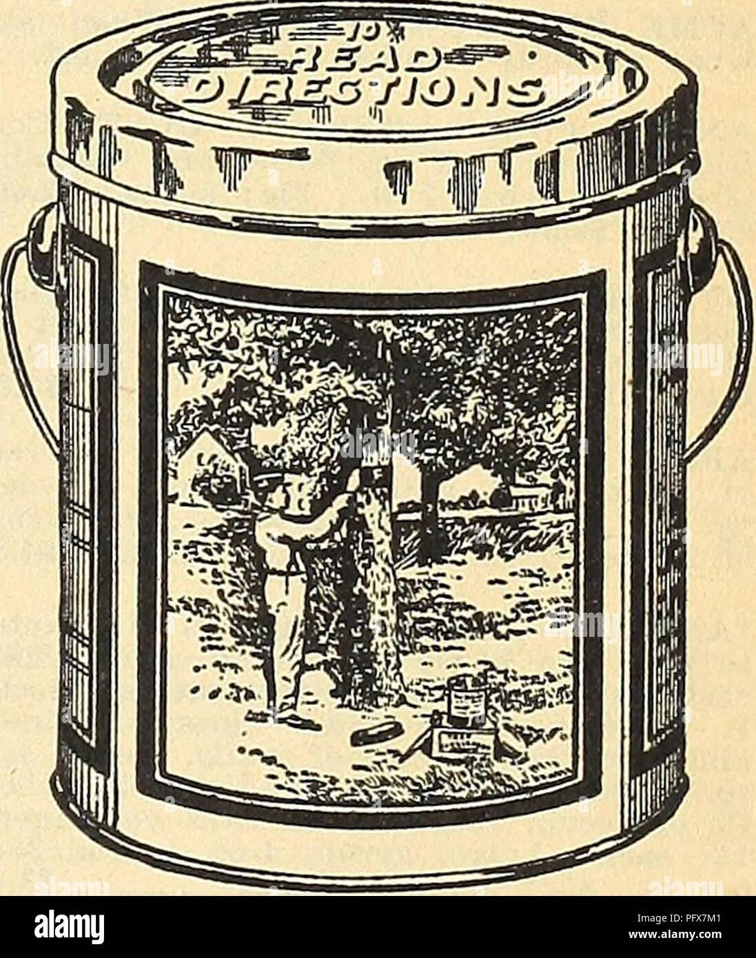 . Currieu0027s Garten Jährliche: 63 Im Frühjahr 1938. Blumen Samen Kataloge,  Leuchtmittel (Pflanzen) Samen Samen Kataloge Kataloge; Gemüse; ...