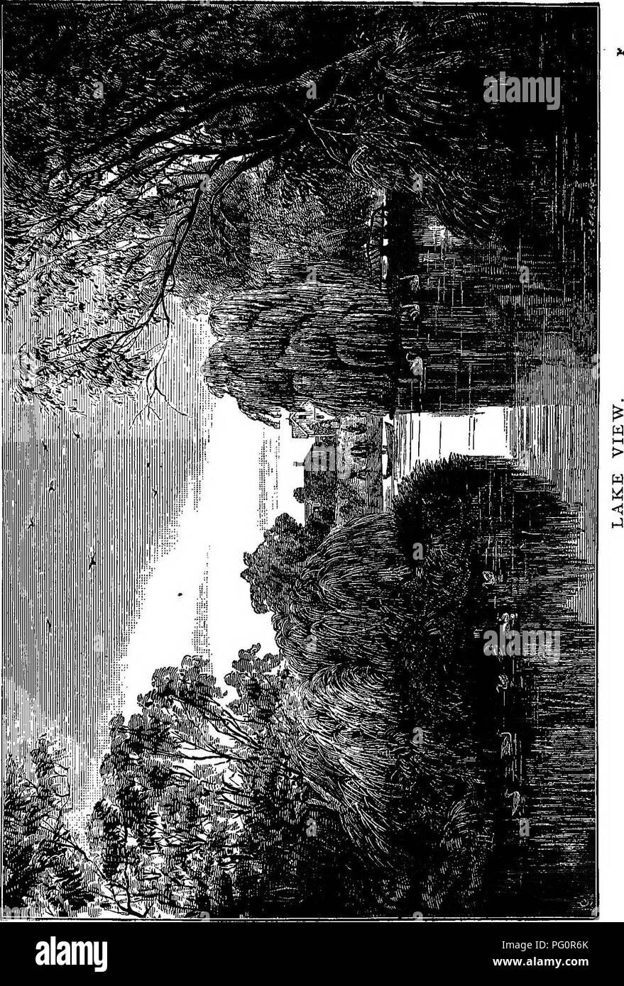 Entzuckend . Katalog Der Pflanzen Unter Anbau In Der Regierung Botanischer Garten,  Adelaide, South Australia. Botanik, Botanischer Garten, Pflanzen,  Kultiviert.