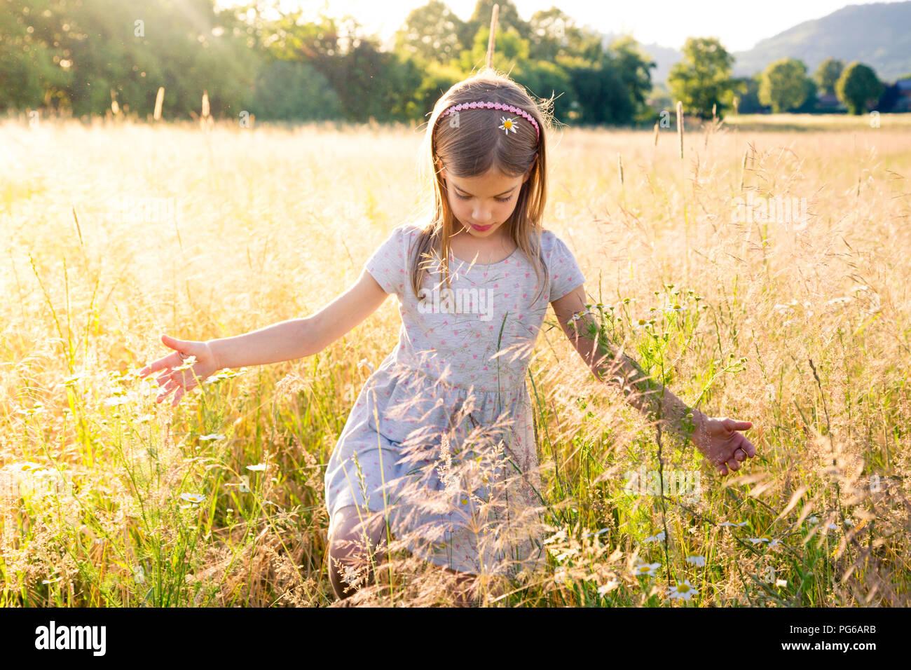 Junge Mädchen zu Fuß durch das Feld im Sommer Abend Stockbild
