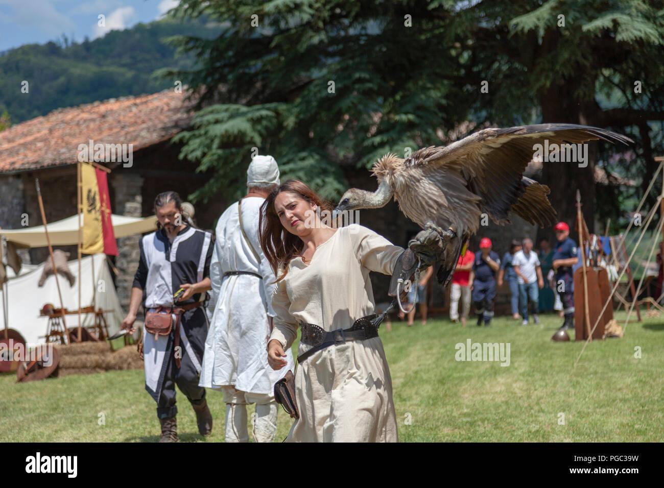 Ein falkner Assistant bringen einen Raubvogel in der Zeit der mittelalterlichen Falknerei, in Barga (Toskana, Italien). Assistante de Fauconnier, à Barga. Stockbild