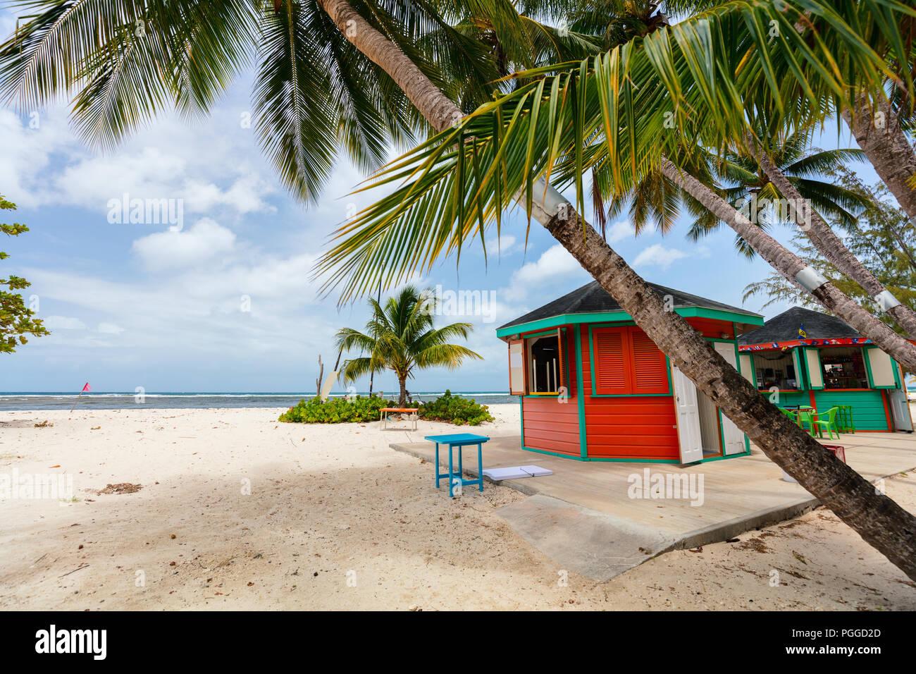 Idyllischen tropischen Strand mit weissem Sand, Palmen und türkisblaues Meer Wasser auf der Insel Barbados in der Karibik Stockbild