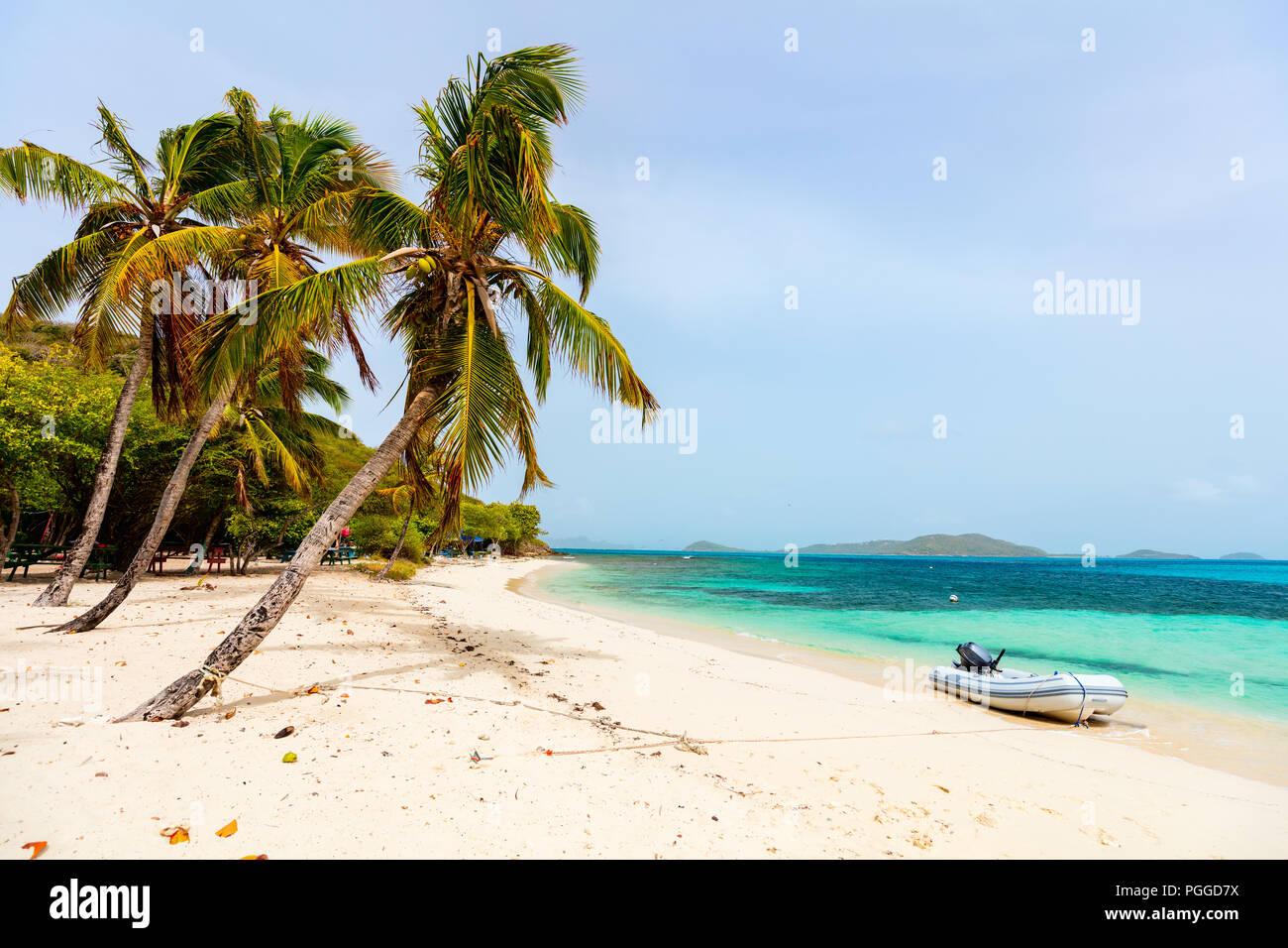Idyllischen tropischen Strand mit weissem Sand, Palmen und das türkisblaue Karibische Meer Wasser auf der exotischen Insel Tobago Cays, St. Vincent und die Grenadinen Stockbild