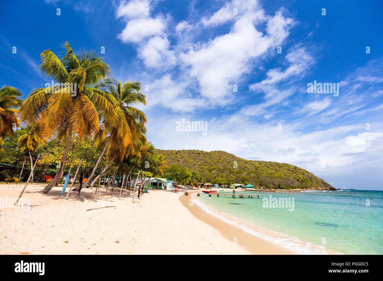 Idyllischen tropischen Strand mit weissem Sand, Palmen und das türkisblaue Karibische Meer Wasser auf mayreau Island in St. Vincent und die Grenadinen Stockbild