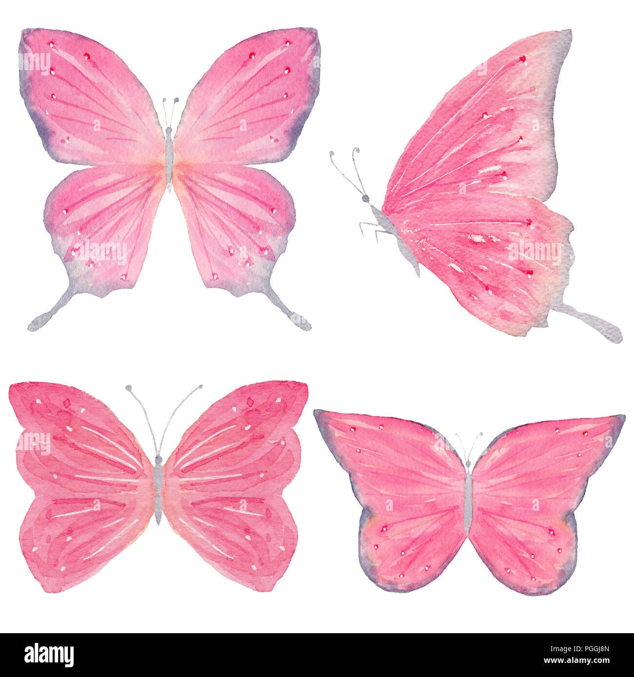 Satz Von Hand Gemalte Aquarell Schmetterlinge Isolierte Cliparts