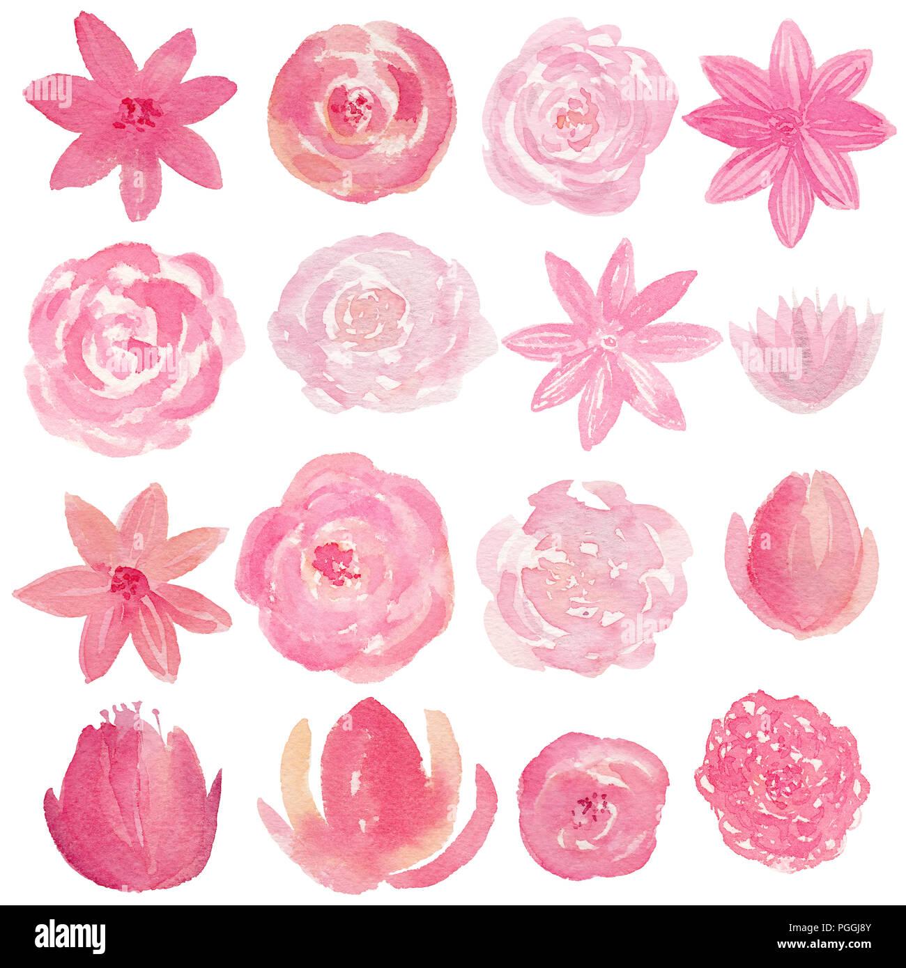 Satz Von Hand Gemalte Aquarell Blumen In Rosa Farbe Isolierte