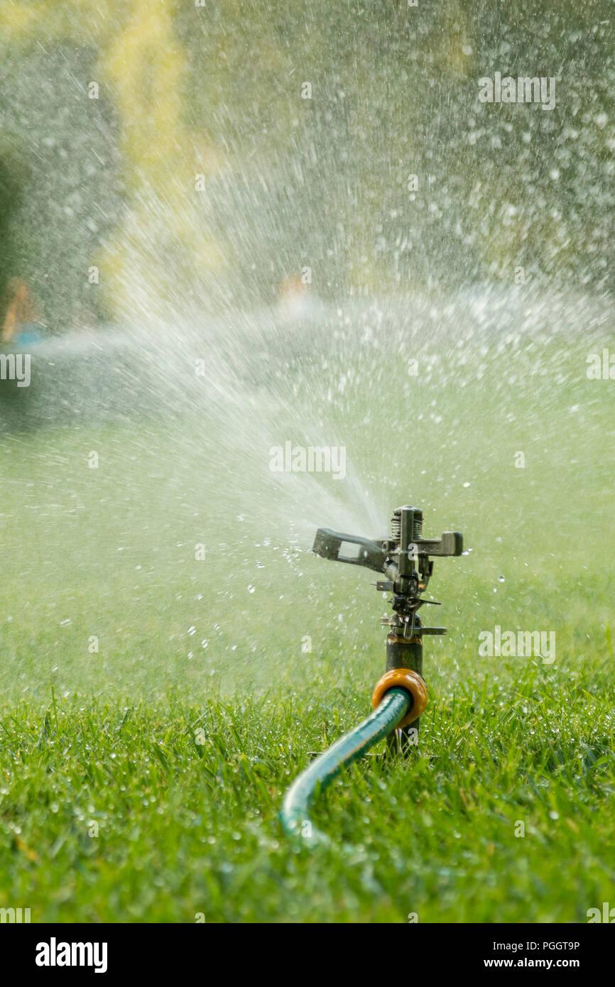 Rasen Sprinklerwasser Spaying Uber Grune Gras Bewasserungsanlage