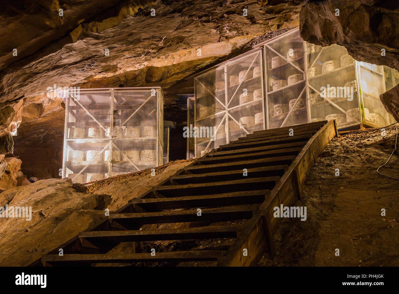 Räder von Cheddar Käse reift oder Altern in einer Höhle Stockbild