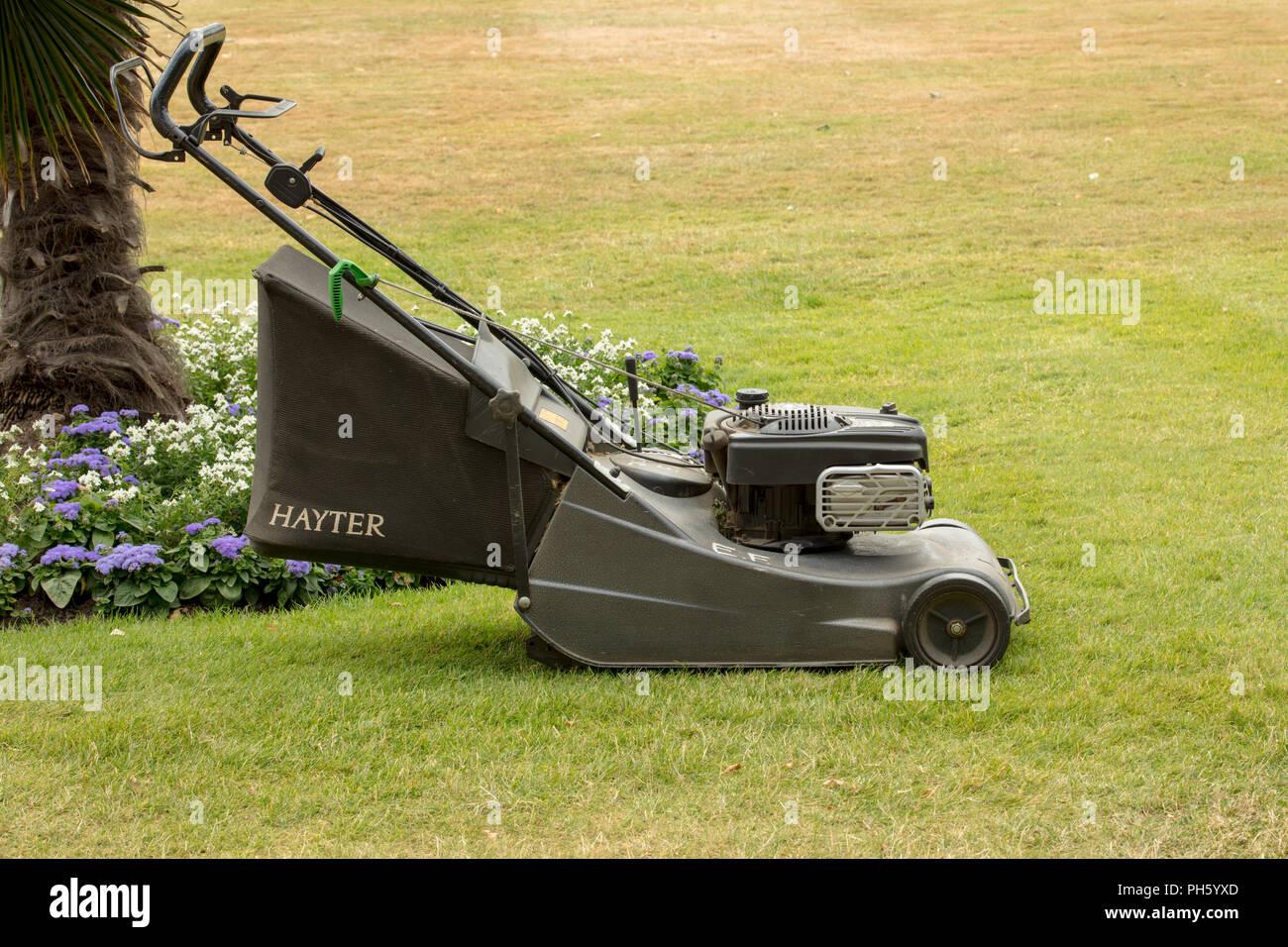 Lieblings Benzin selbstfahrende Rasenmäher mit einem hinteren Walze zu &BB_42