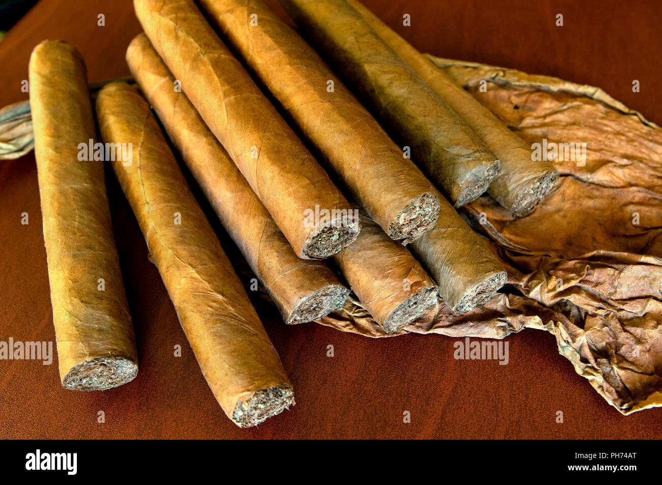 Kubanische Zigarren, Kuba Stockbild