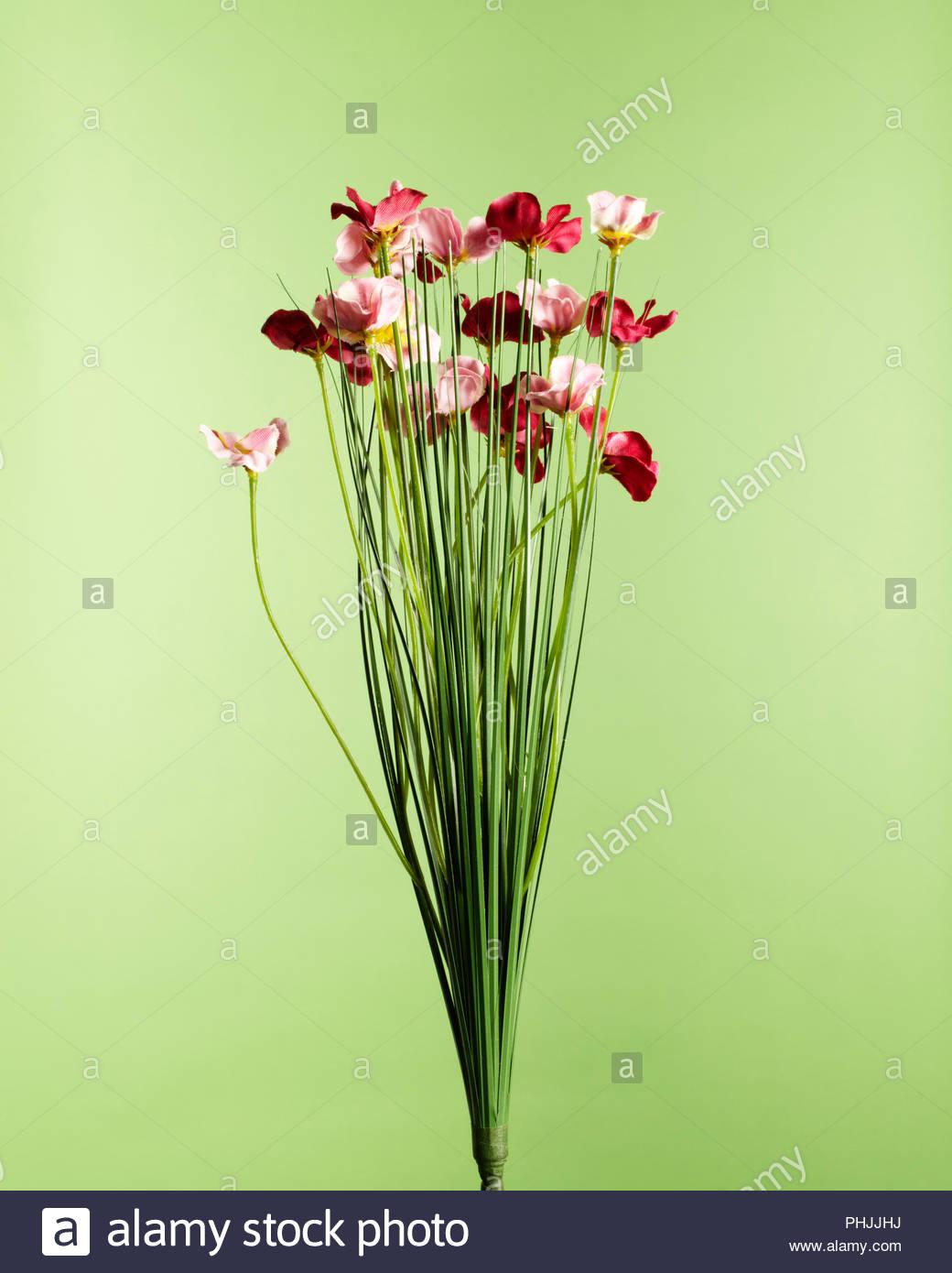 Rosa und rote Blüten Stockbild