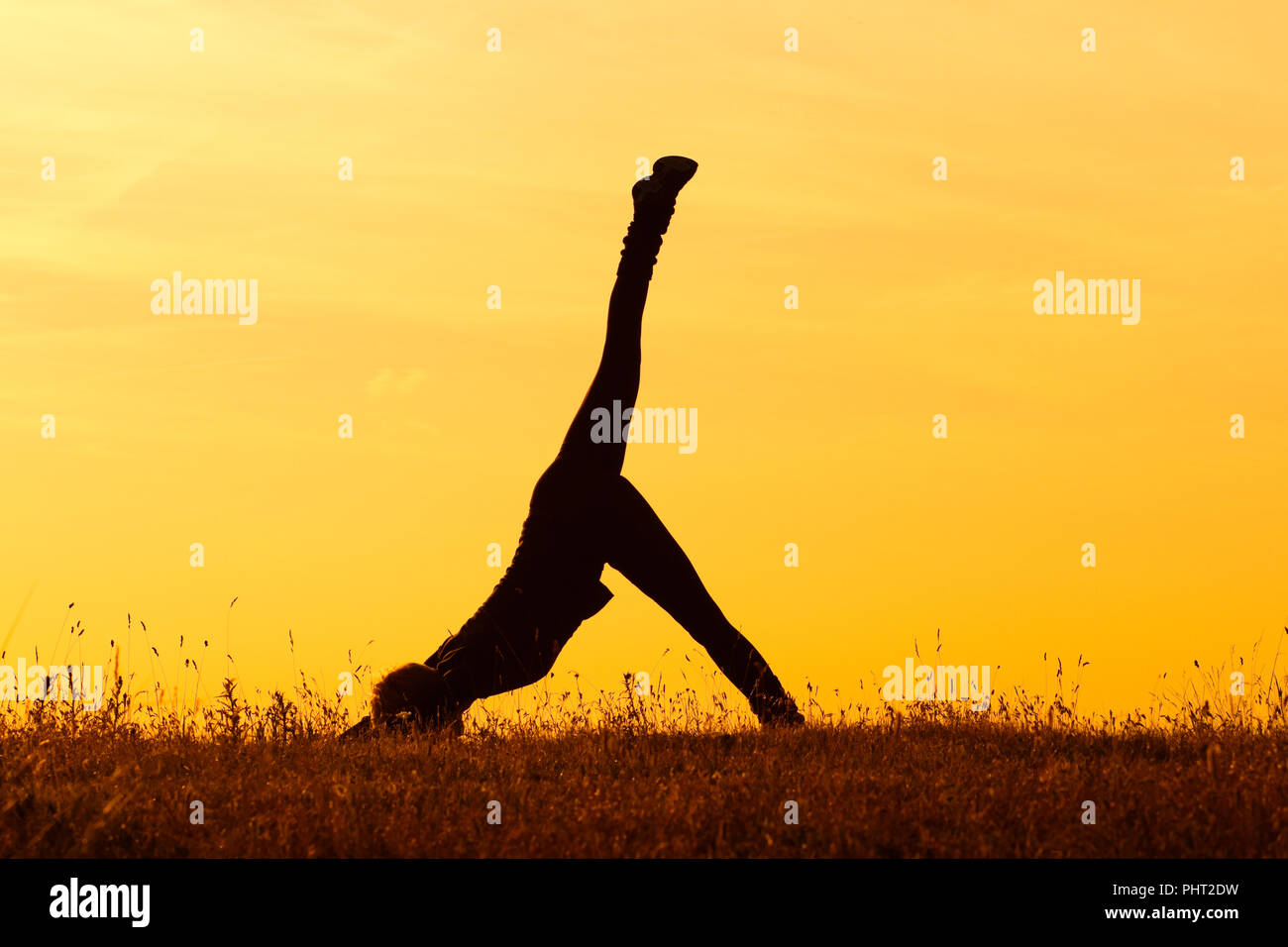Yogaone Legged Downward Facing Hund Darstellen Stockfoto Bild