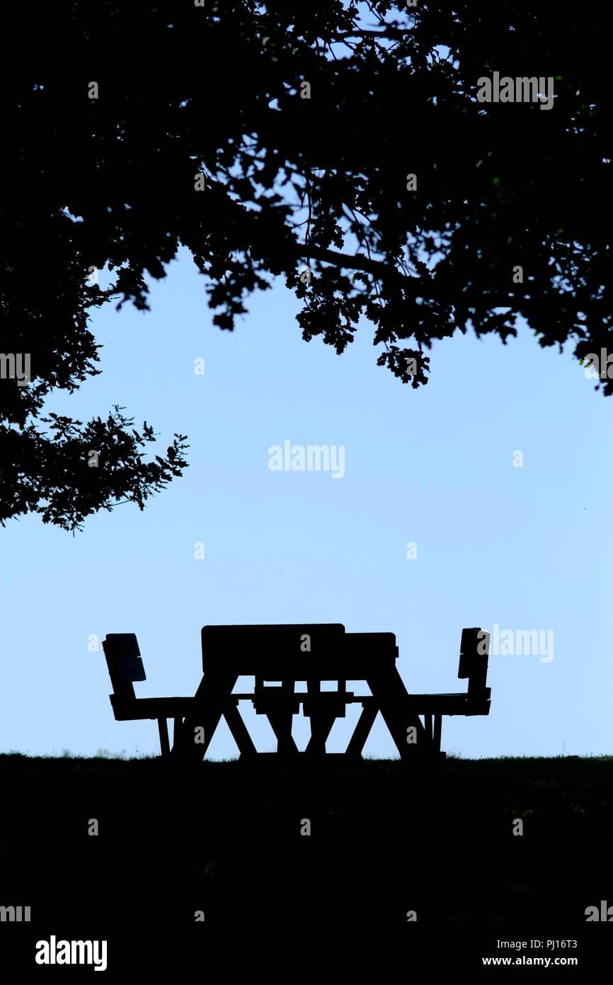 Picknick Tisch unter einem Baum, Silhouette. Stockbild