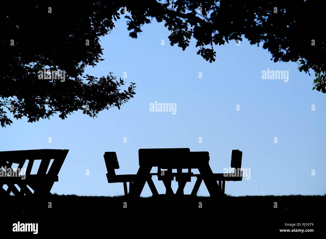 Picknick Tisch unter einem Baum, Silhouette. Stockfoto