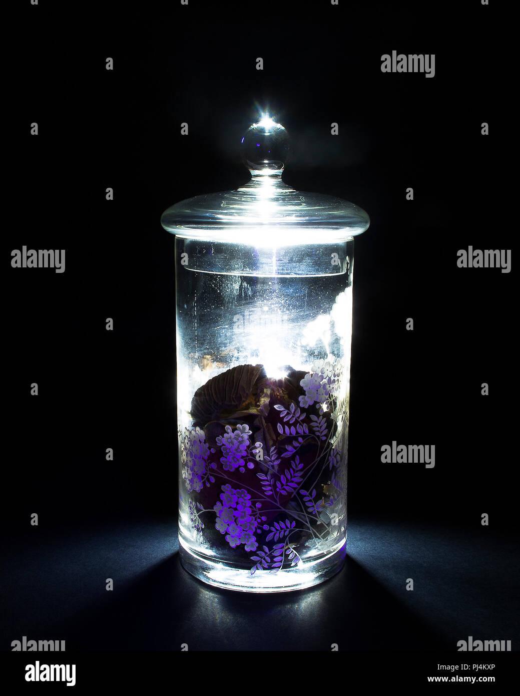 Bekannt Glas Glas von hinten beleuchtet auf schwarzem Hintergrund SC13