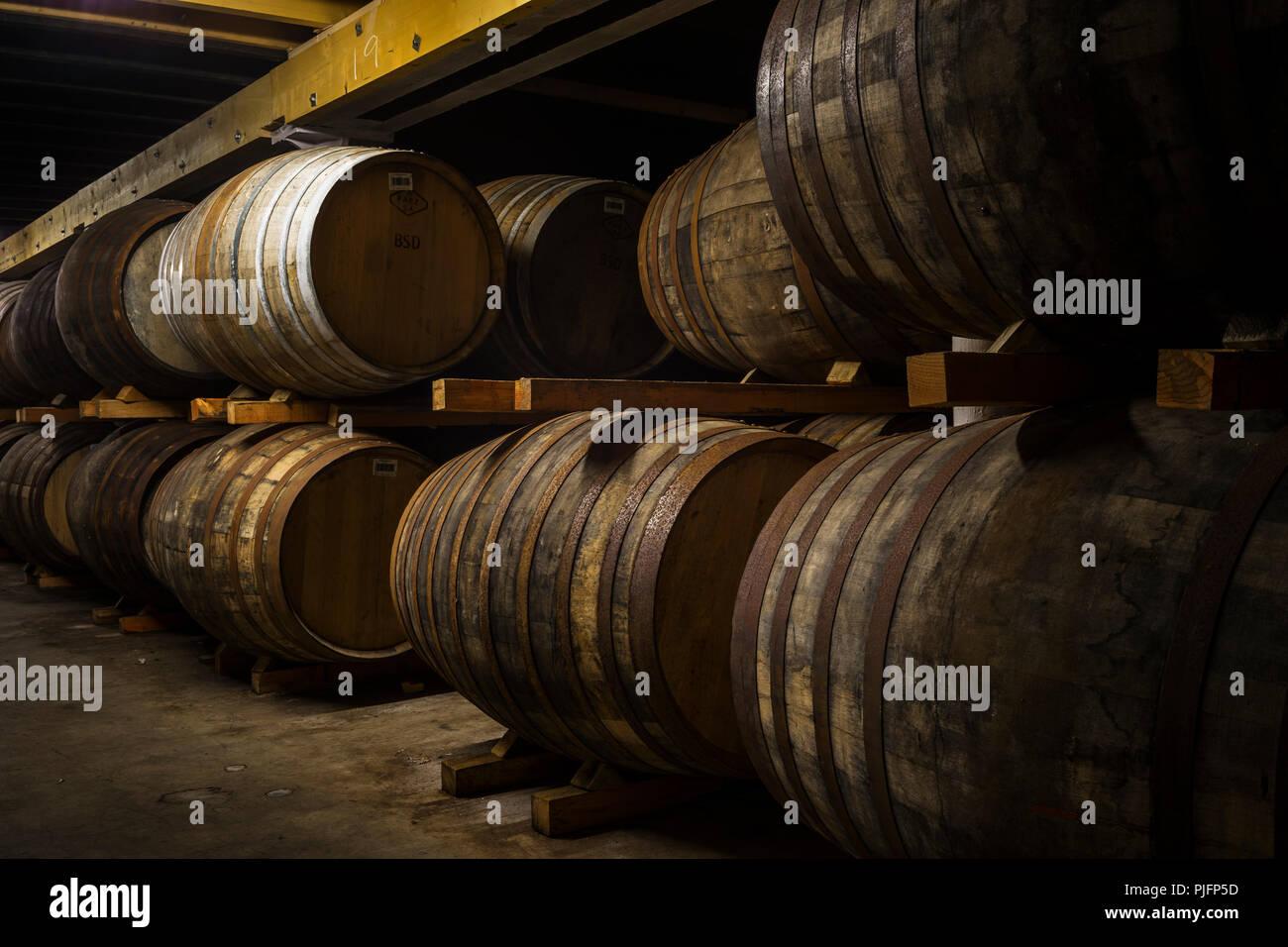 Fässer Whisky bei Bunnahabhain, Altern in der warhouse, Islay, Schottland Stockbild