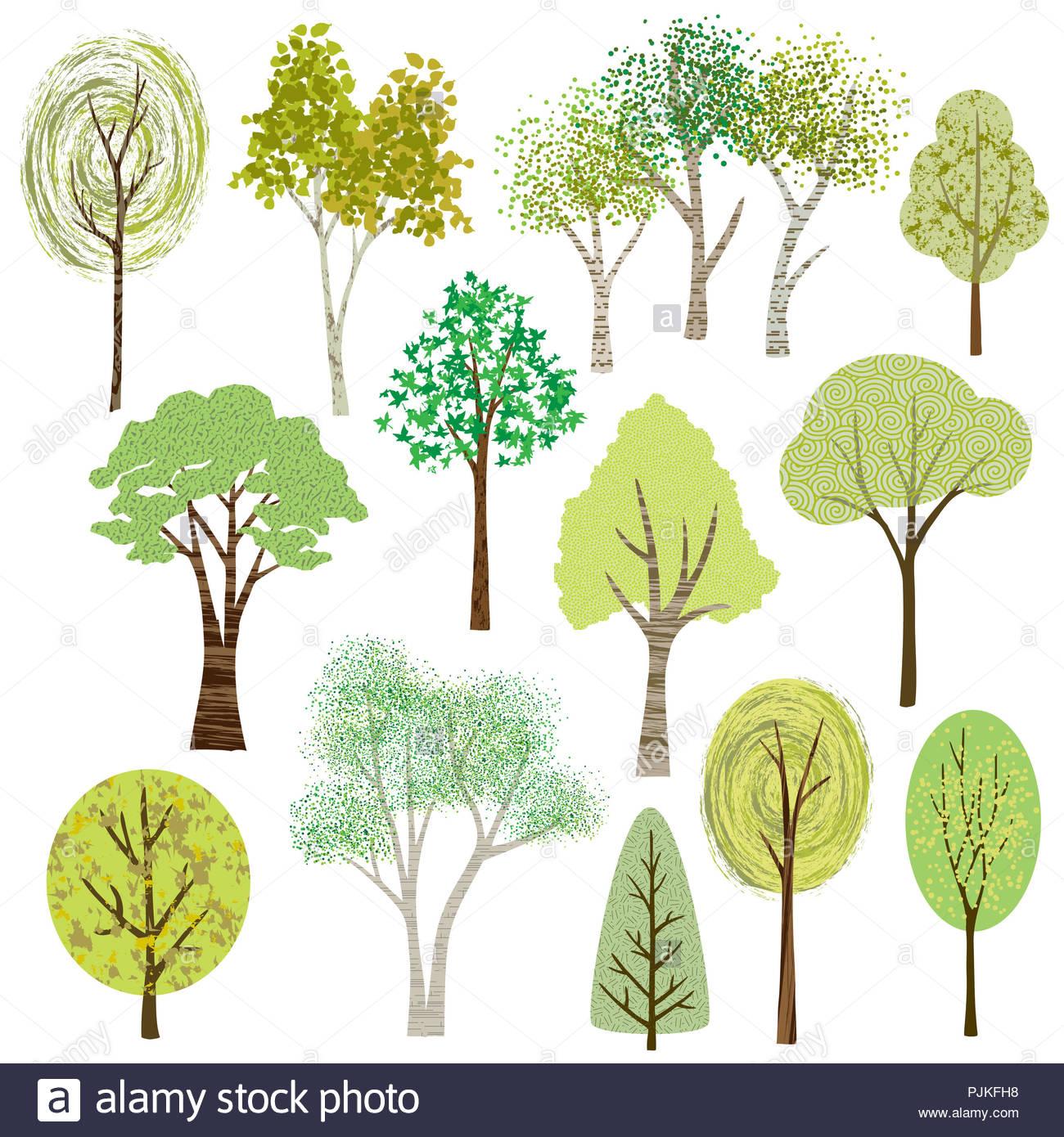 Eine Sammlung Von 13 Verschiedenen Frühling Und Sommer Vektor Wald