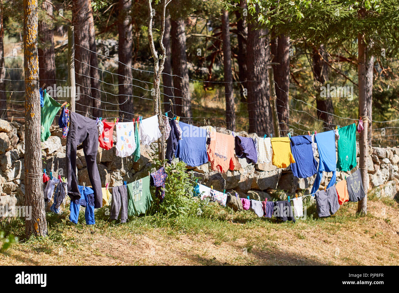 Wäscheleine in einem Campingplatz Stockbild