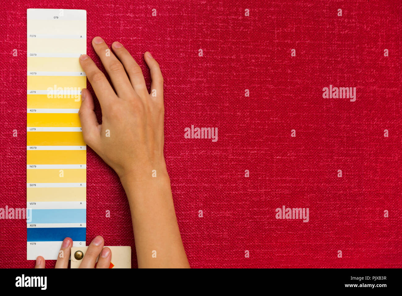 Home Improvement. Schöne Frauen wählen eine Farbe aus der ...