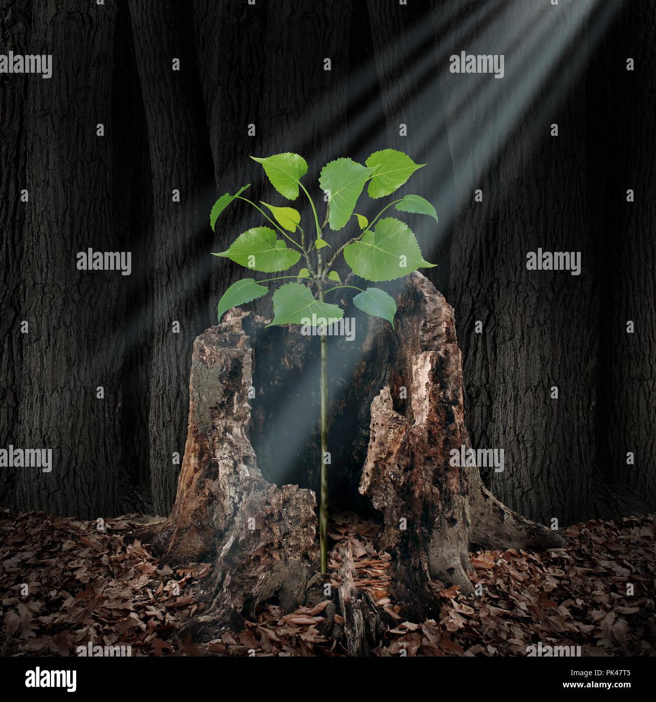 Glauben und glauben Konzept wie ein Strahl aus Licht von oben auf ein Bäumchen wächst aus einem toten Baum als Hoffnung und Spiritualität Idee. Stockbild