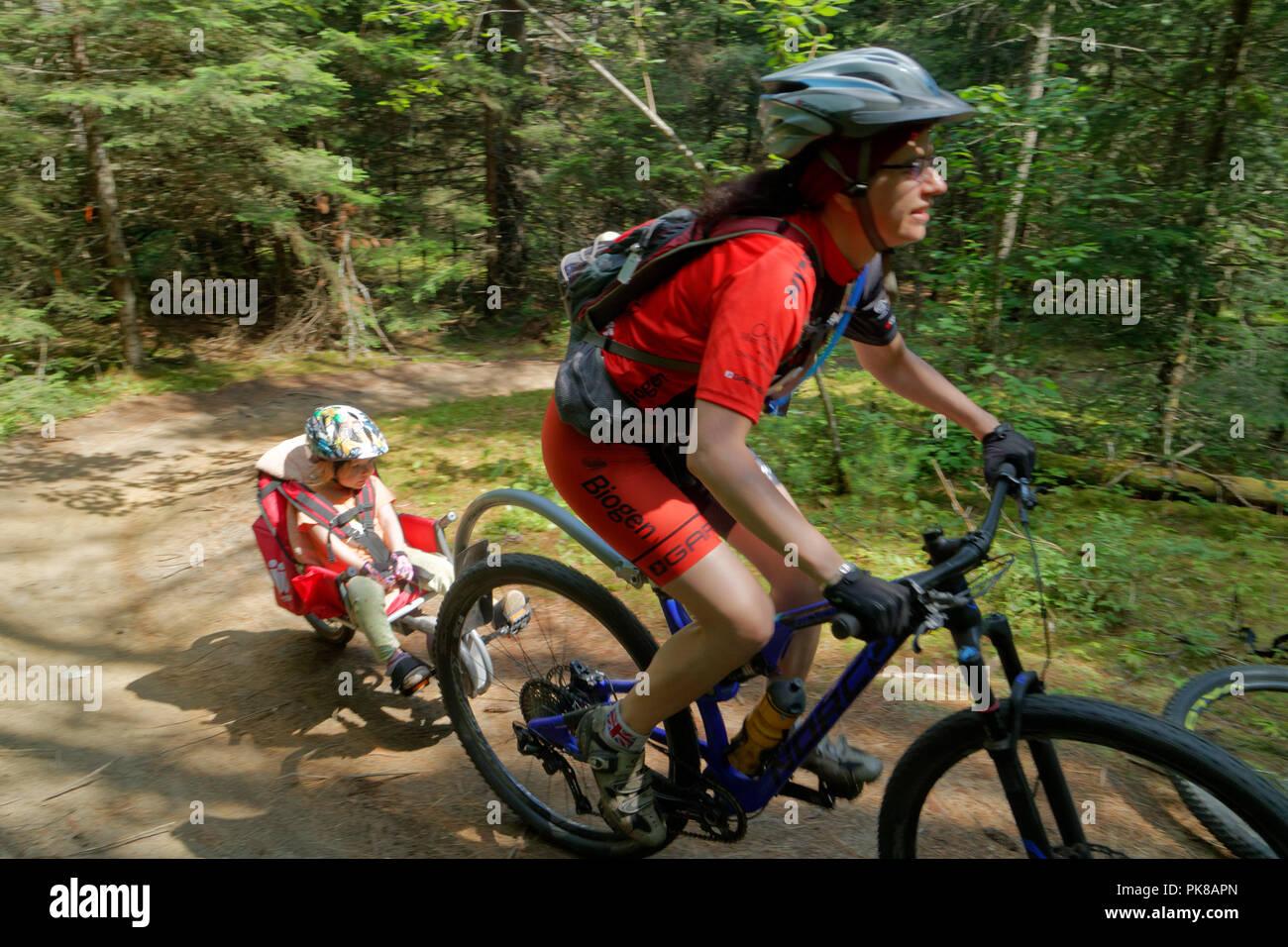 Eine Lady Biker ihre Tochter Abschleppen in einem Weehoo kind Fahrradanhänger im Königreich Trails an der East Burke in Vermont, USA Stockfoto