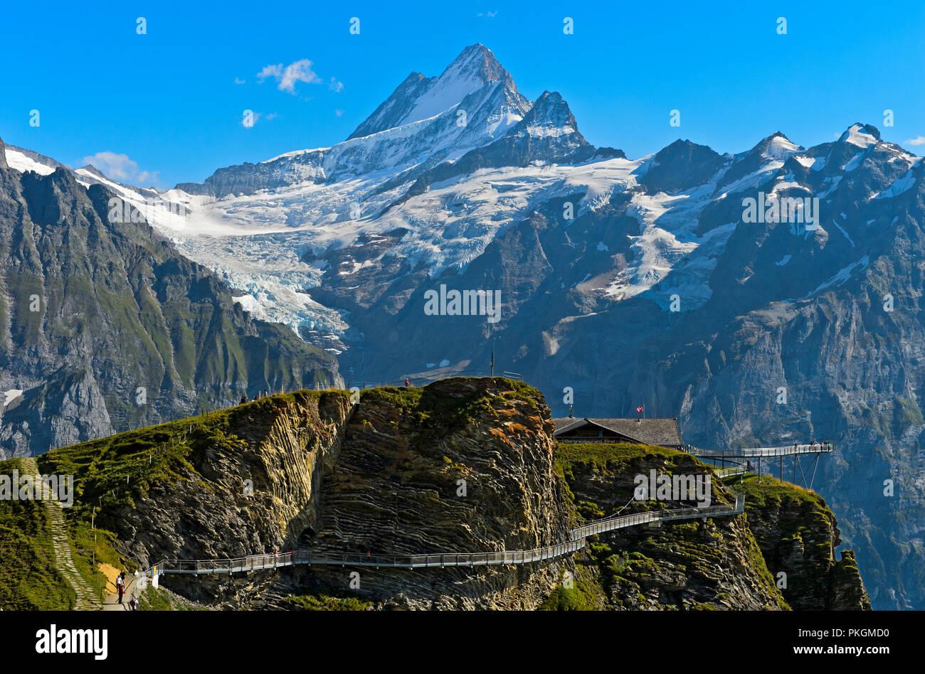 Erste Cliff Walk von Tissot mit Aussichtsplattform im Wandergebiet Ersten, Aussicht an der Spitze Schreckhorn, Grindelwald, Berner Oberland, Schweiz Stockbild