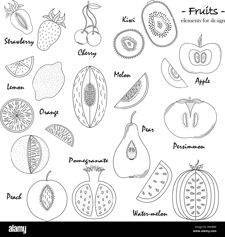 Ein Satz Von Hand Gezeichnete Süße Früchte Für Design Vektor