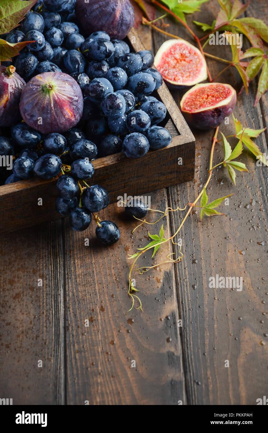 Frischen schwarzen Trauben und Feigen in dunklen Holz- Fach auf Holztisch selektiven Fokus Stockbild
