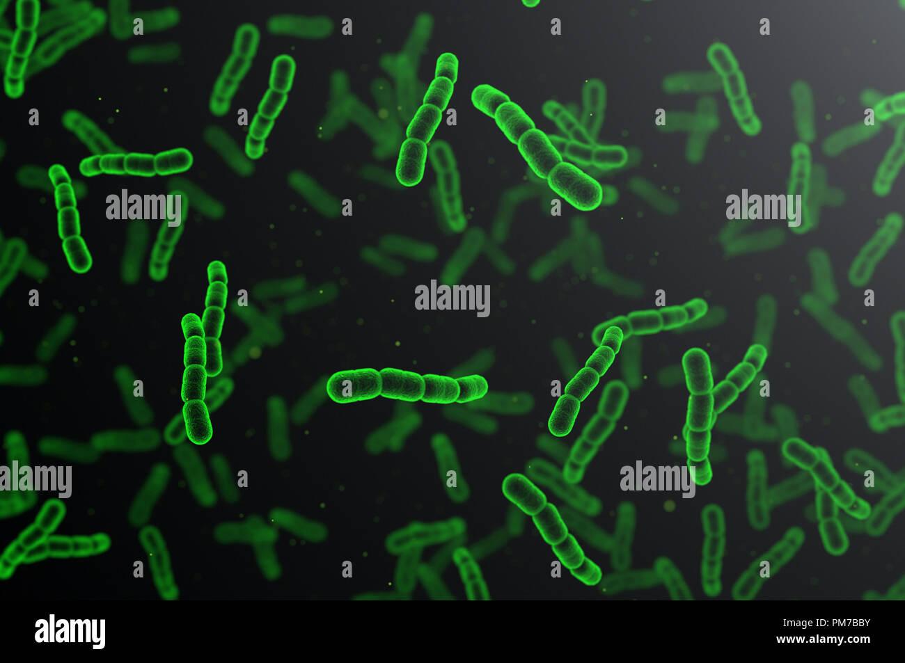 Streptococcus pneumoniae, grüne Zellen auf dunklem Hintergrund Stockfoto