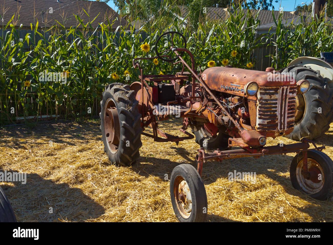 Antike McCormick Traktor Stockfoto