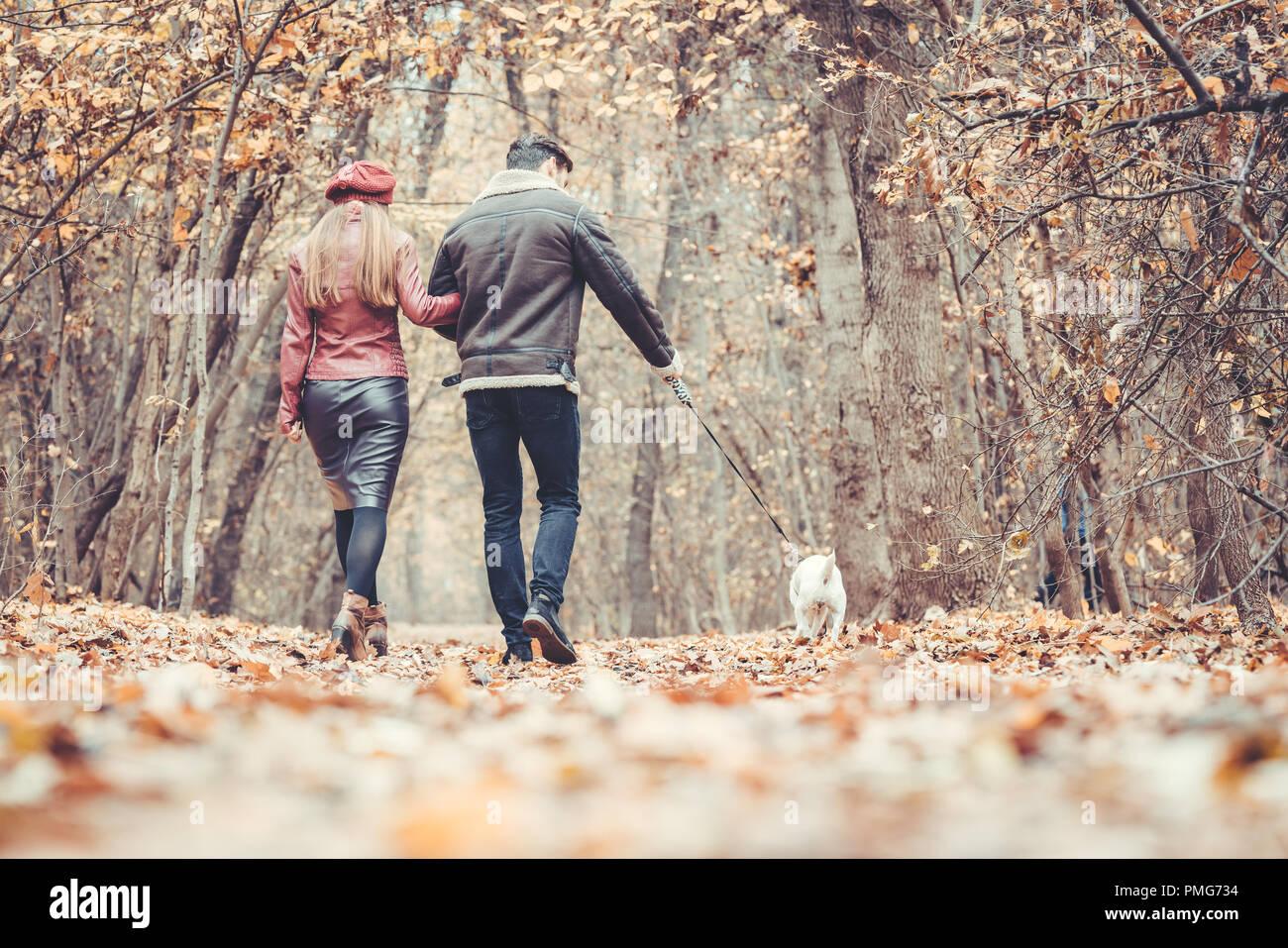Frau und Mann im Herbst ein Spaziergang mit ihrem Hund im Park Stockbild