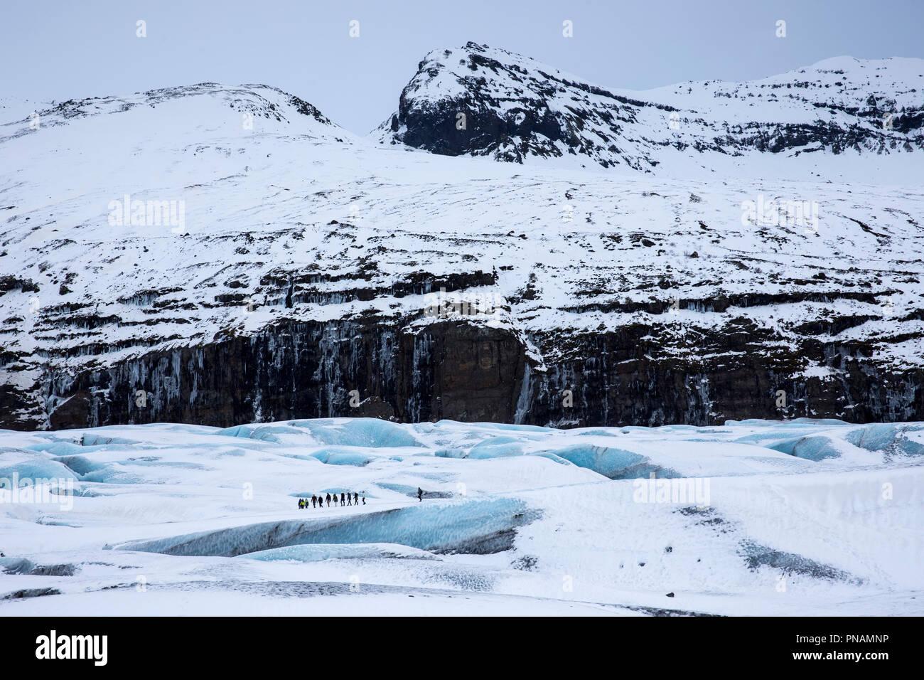 Gruppe der Touristen zu Fuß auf Abenteuer Trek auf Svinafellsjokull Gletscher eine Steckdose Gletscher Vatnajökull, South Island Stockbild