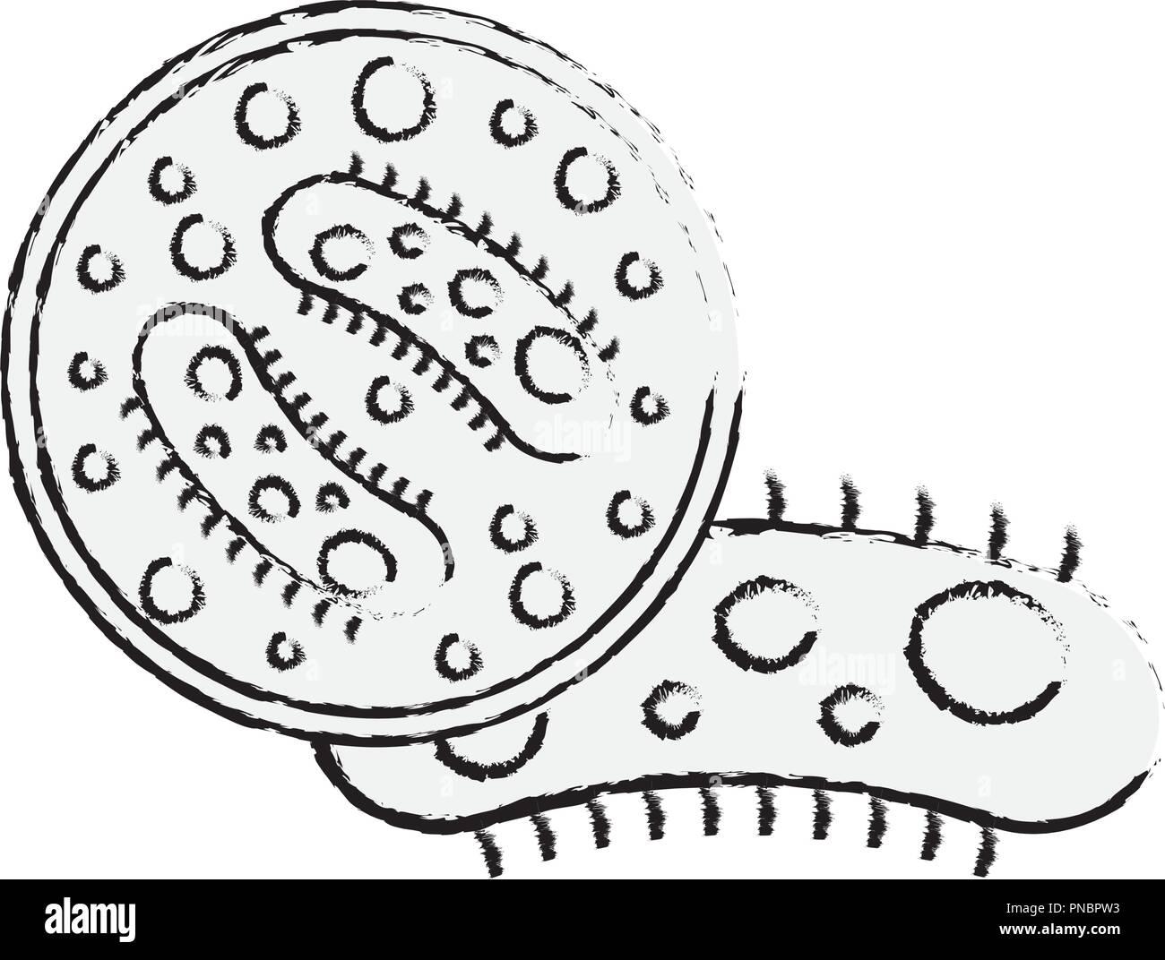 Virologie germ Bakterien Petrischale Wissenschaft Stockbild