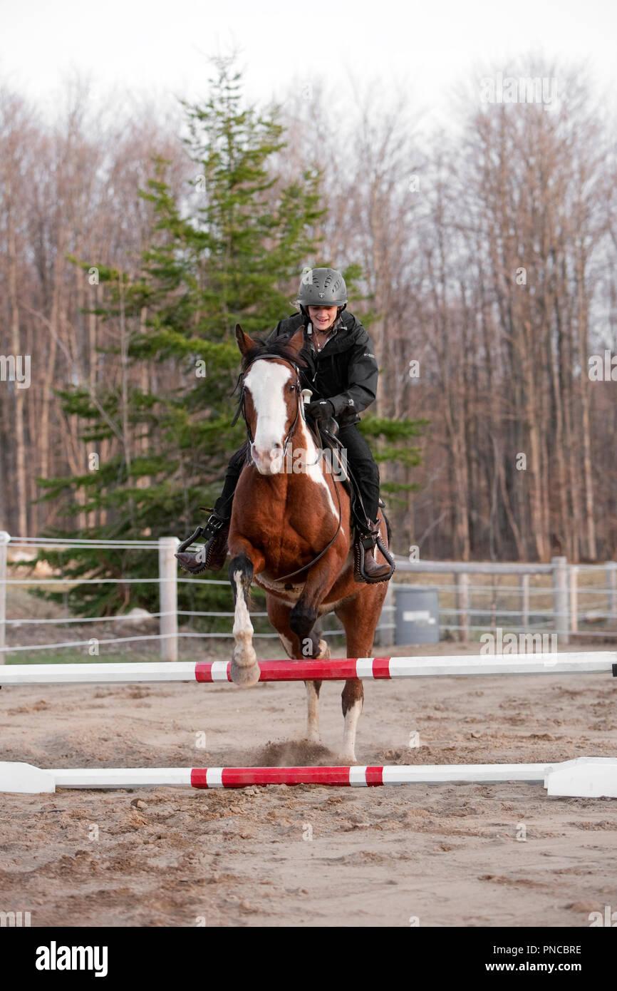Nordamerika, Kanada, Ontario, junges Mädchen auf Pferd springen Hürde Stockbild