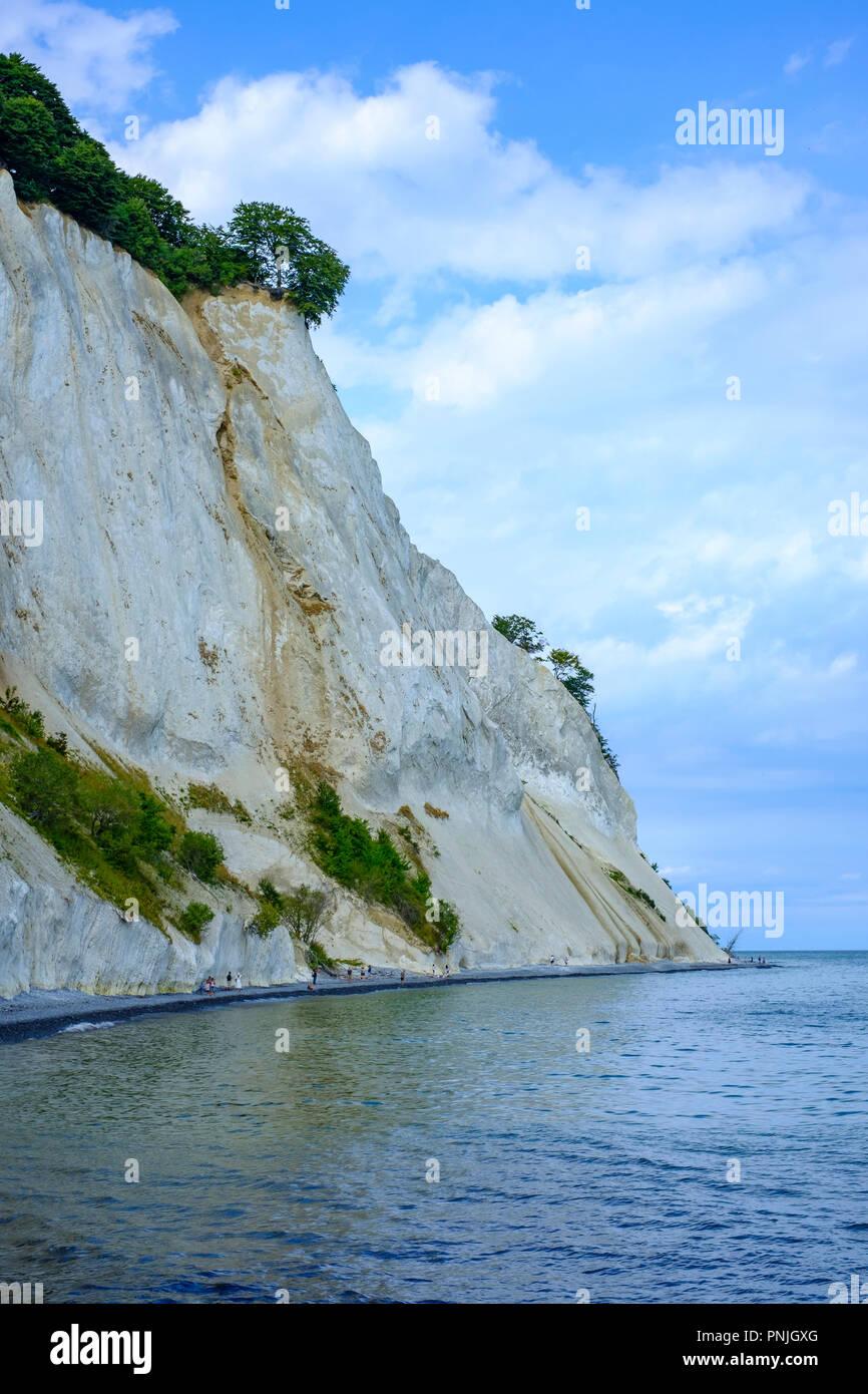 Moens Klint, die weißen Klippen von Moen, Moen Island, Dänemark, Skandinavien, Europa. Stockbild