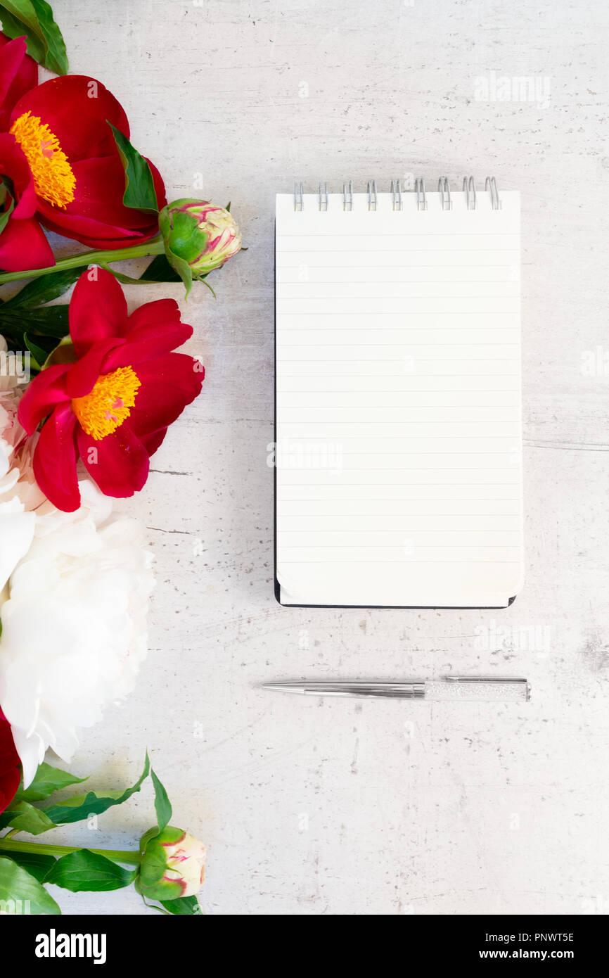 c166f77feeb Blühende rote und weiße Pfingstrose Blüten mit Blättern auf weißem  Hintergrund Holz, kopieren auf leer Notebook